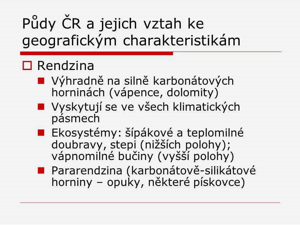 Půdy ČR a jejich vztah ke geografickým charakteristikám  Rendzina Výhradně na silně karbonátových horninách (vápence, dolomity) Vyskytují se ve všech