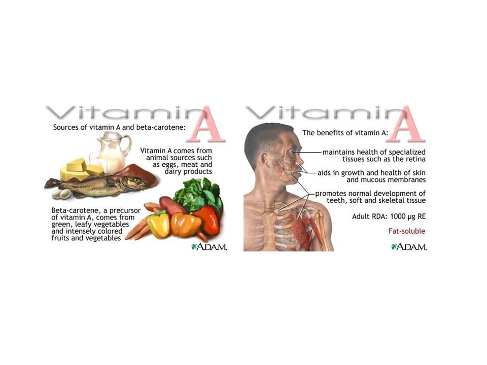 Vitamin D -cholekalciferol, ergokalciferol Funkce+zdroje: Rostliny: Ergokalciferol, Živočichové: cholekalciferol → v našem těle kalcitriol →metabolismus vápníku a fosforu (Zvýšení vstřebávání vápníku a fosforu ve střevě, zpětná resorpce vápníku v ledvinách)- kosti, zuby, pokožka.