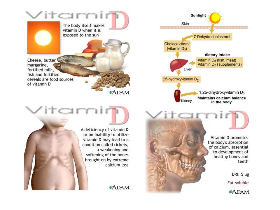 Vitamin B3 – niacin (vitamin PP) Funkce: koenzymy mnoha oxidoredukčních enzymů – klíčová složka mnoha metabolických drah (sacharidů, lipidů, bílkovin) DDD: 15mg, těhotné 18 mg Deficit: změny na kůži (nemoc Pelagra) a sliznicích, nervové příznaky (deprese, apatie,únava, bolest hlavy) Zdroje:maso (100g)=1,8-13mg, mléko (100g)=0,5 mg, droždí (10 g)=1,2-2,0mg, luštěniny (100g)=14-3,0g (v kukuřici a čiroku je vit.B3pevně vázána a je špatně využitelný) Stabilita: poměrně stabilní, největší ztráty výluhem až 50% Pozn: může se přeměňovat z tryptofanu (60mg tryptofanu=1mg niacinu)