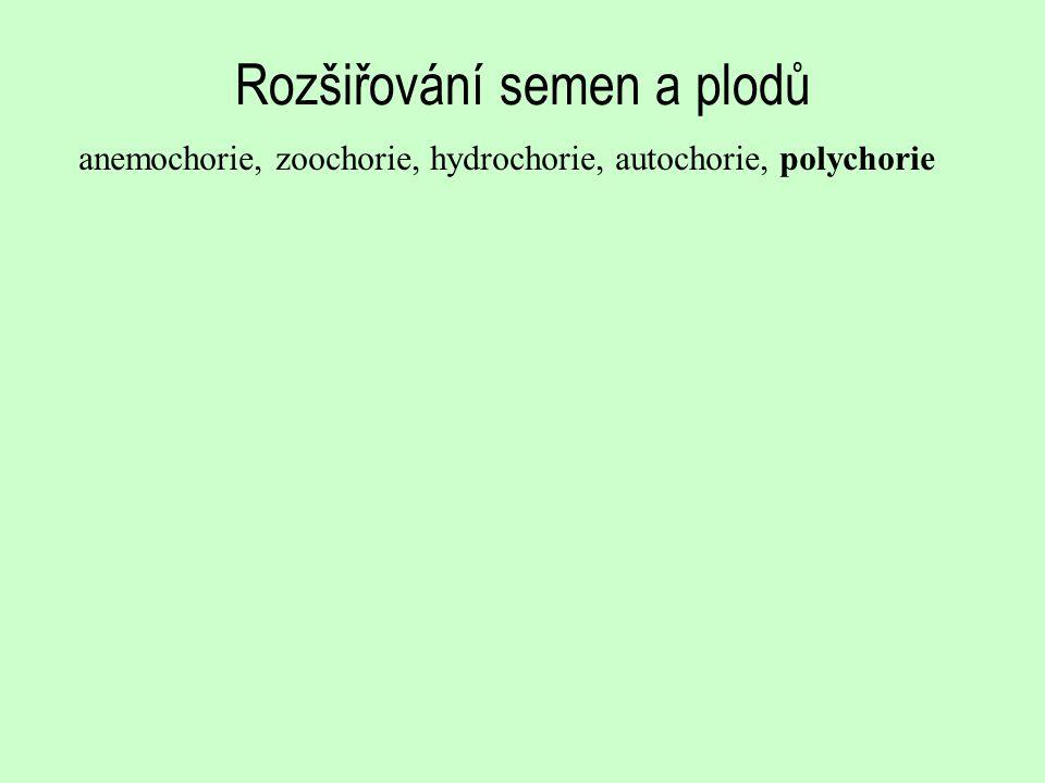 Rozšiřování semen a plodů anemochorie, zoochorie, hydrochorie, autochorie, polychorie