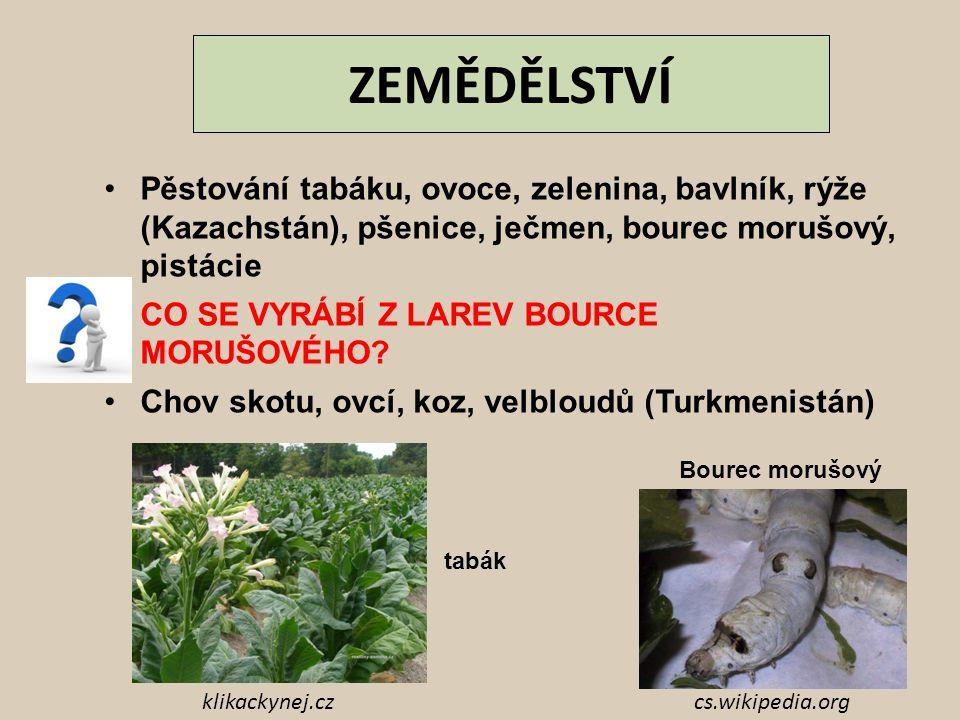 ZEMĚDĚLSTVÍ Pěstování tabáku, ovoce, zelenina, bavlník, rýže (Kazachstán), pšenice, ječmen, bourec morušový, pistácie CO SE VYRÁBÍ Z LAREV BOURCE MORU