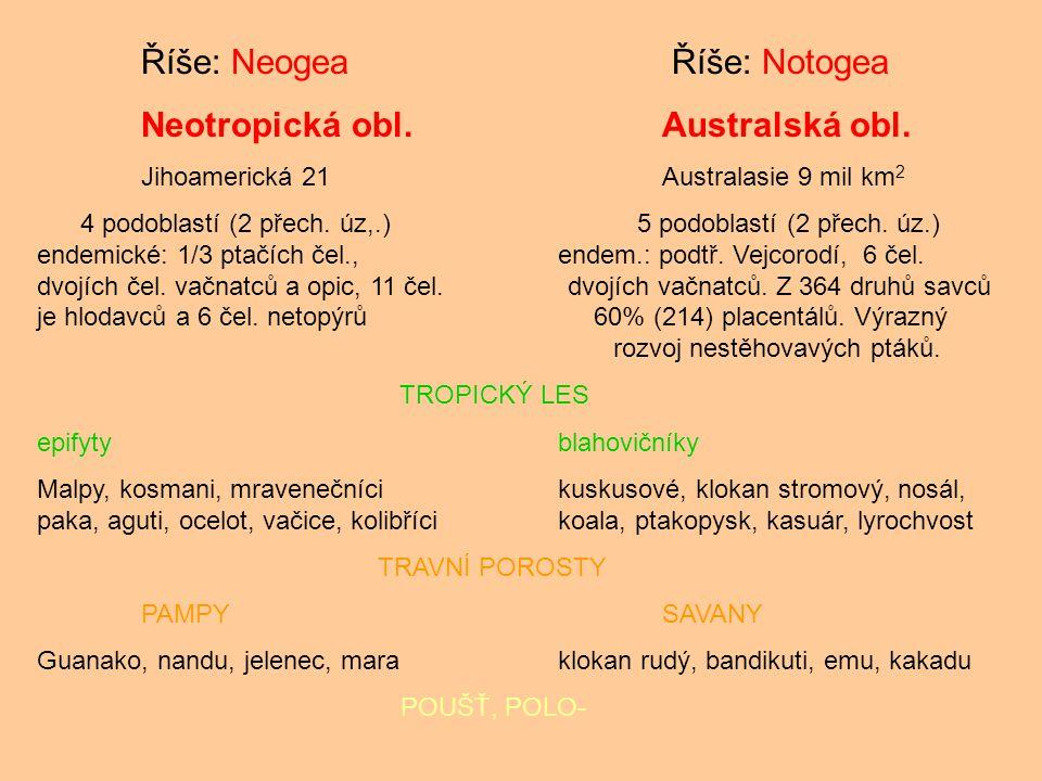 Říše: Neogea Říše: Notogea Neotropická obl.Australská obl. Jihoamerická 21Australasie 9 mil km 2 4 podoblastí (2 přech. úz,.) 5 podoblastí (2 přech. ú