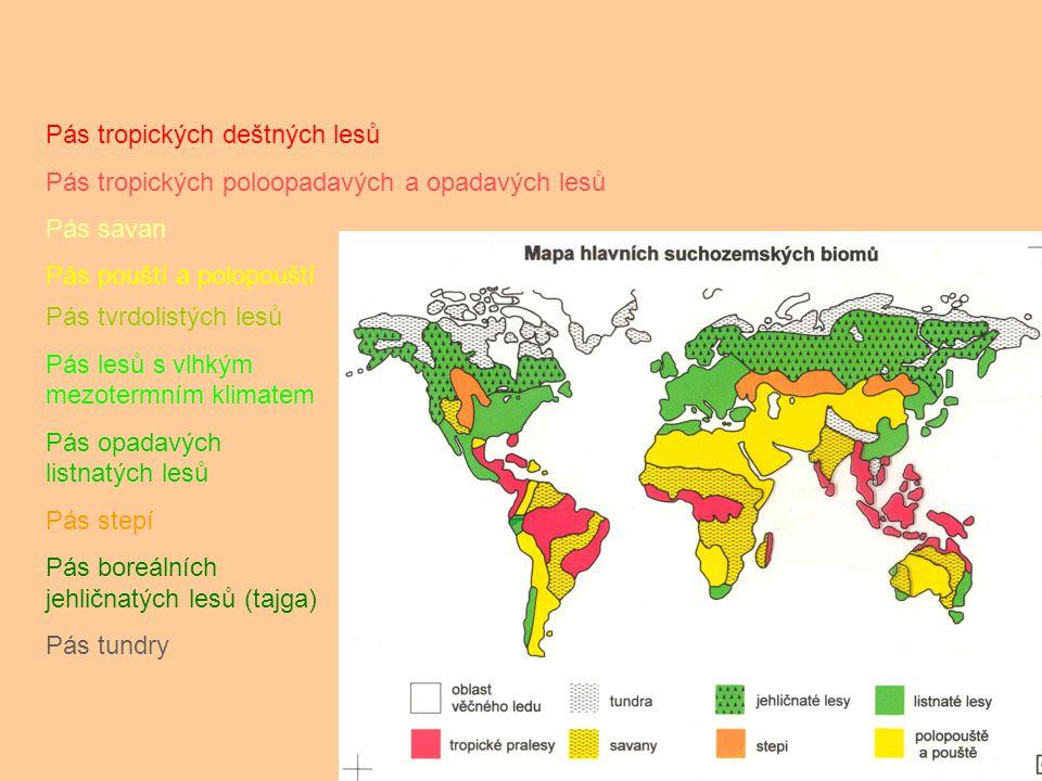 Pás tropických deštných lesů Pás tropických poloopadavých a opadavých lesů Pás savan Pás pouští a polopouští Pás tvrdolistých lesů Pás lesů s vlhkým m