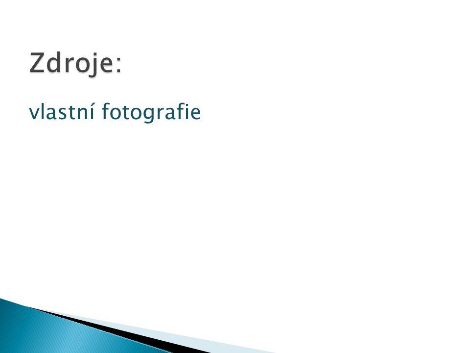 vlastní fotografie