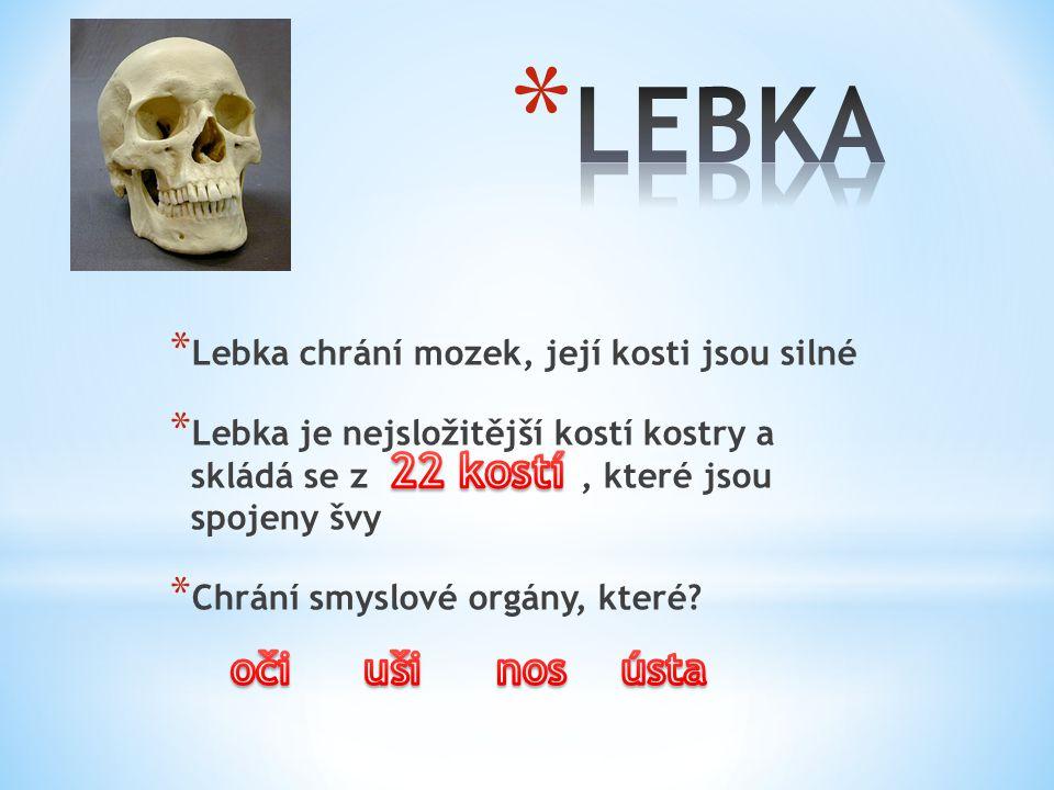 * Lebka chrání mozek, její kosti jsou silné * Lebka je nejsložitější kostí kostry a skládá se z, které jsou spojeny švy * Chrání smyslové orgány, které?