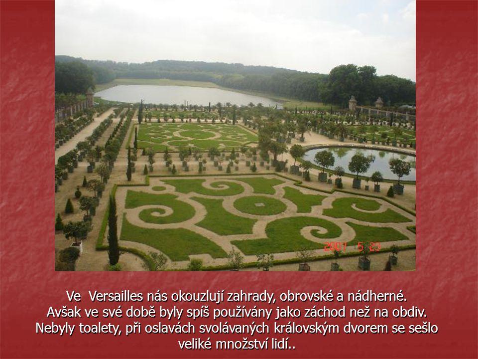 Ve Versailles nás okouzlují zahrady, obrovské a nádherné.