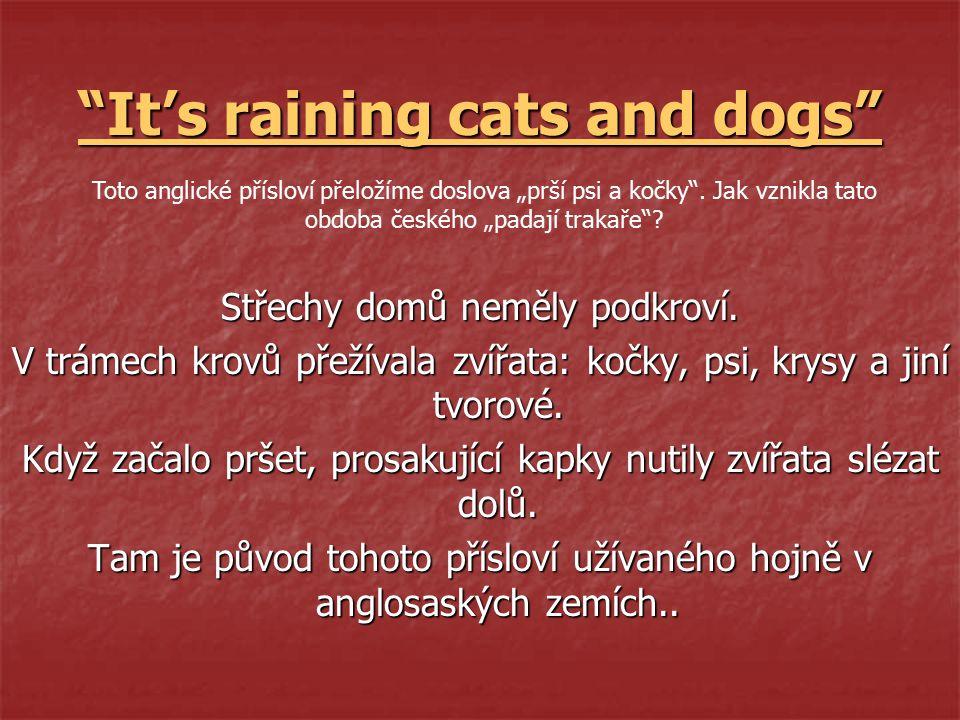 It's raining cats and dogs Střechy domů neměly podkroví.