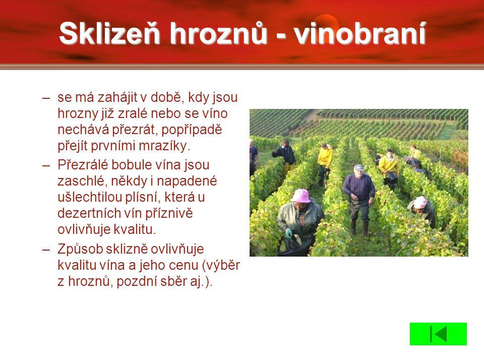 Sklizeň hroznů - vinobraní –se má zahájit v době, kdy jsou hrozny již zralé nebo se víno nechává přezrát, popřípadě přejít prvními mrazíky. –Přezrálé