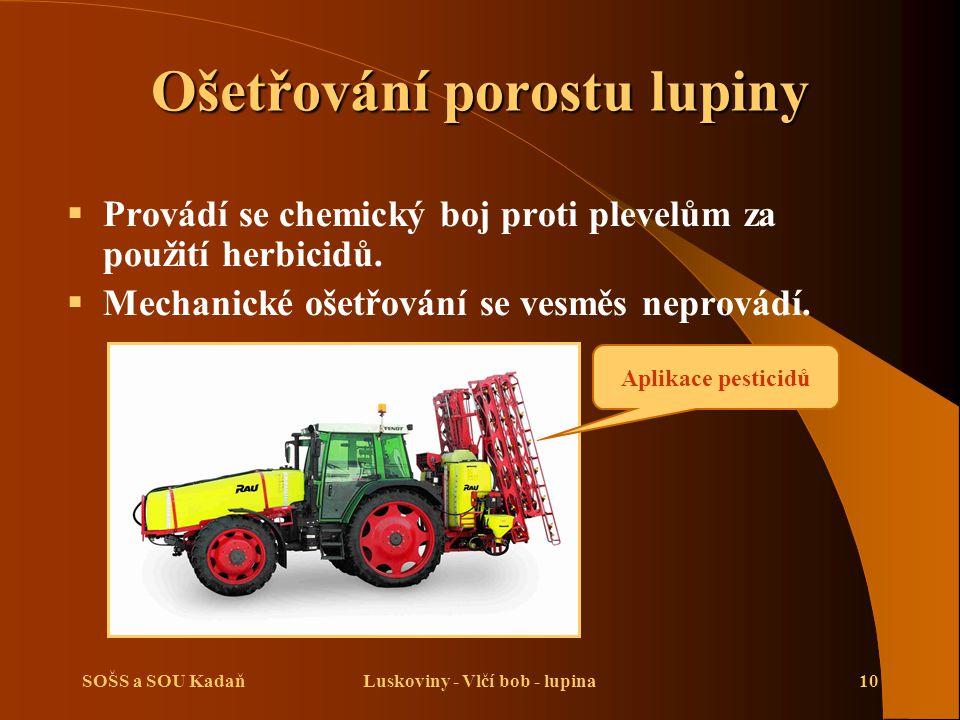 SOŠS a SOU KadaňLuskoviny - Vlčí bob - lupina10 Ošetřování porostu lupiny  Provádí se chemický boj proti plevelům za použití herbicidů.  Mechanické