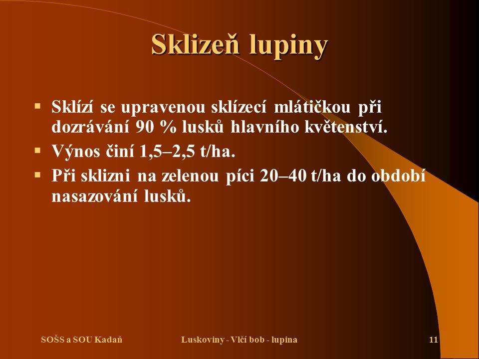 SOŠS a SOU KadaňLuskoviny - Vlčí bob - lupina11 Sklizeň lupiny  Sklízí se upravenou sklízecí mlátičkou při dozrávání 90 % lusků hlavního květenství.
