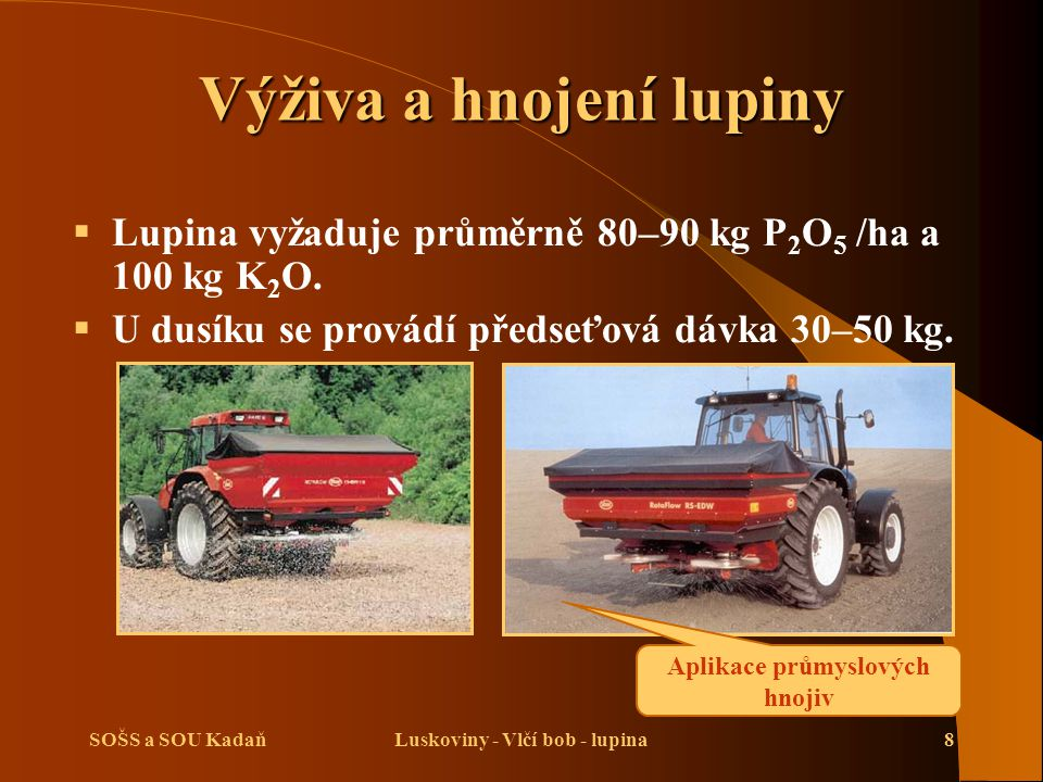 SOŠS a SOU KadaňLuskoviny - Vlčí bob - lupina8 Výživa a hnojení lupiny  Lupina vyžaduje průměrně 80–90 kg P 2 O 5 /ha a 100 kg K 2 O.  U dusíku se p