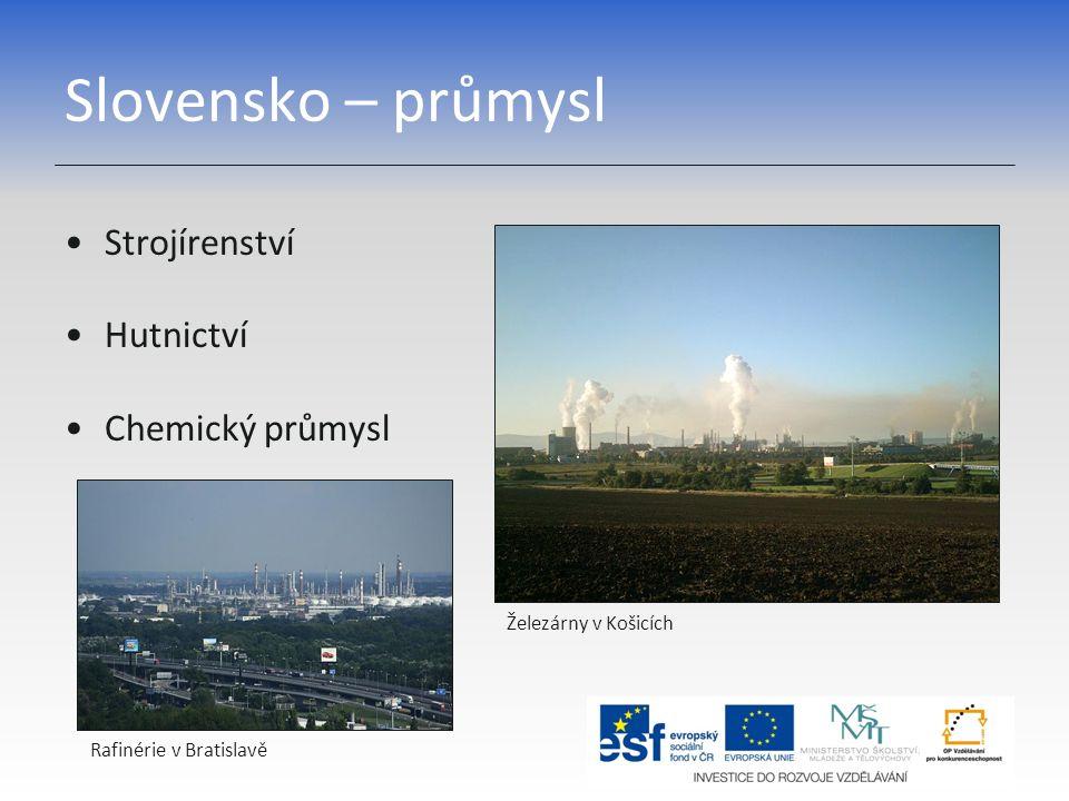 Slovensko – zemědělství V úrodných nížinách pěstování pšenice, zeleniny, kukuřice V horách pastviny a salašnictví Stádo ovcí s bačou Sklizeň