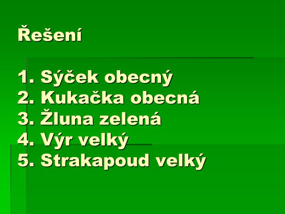 Řešení 1. Sýček obecný 2. Kukačka obecná 3. Žluna zelená 4. Výr velký 5. Strakapoud velký