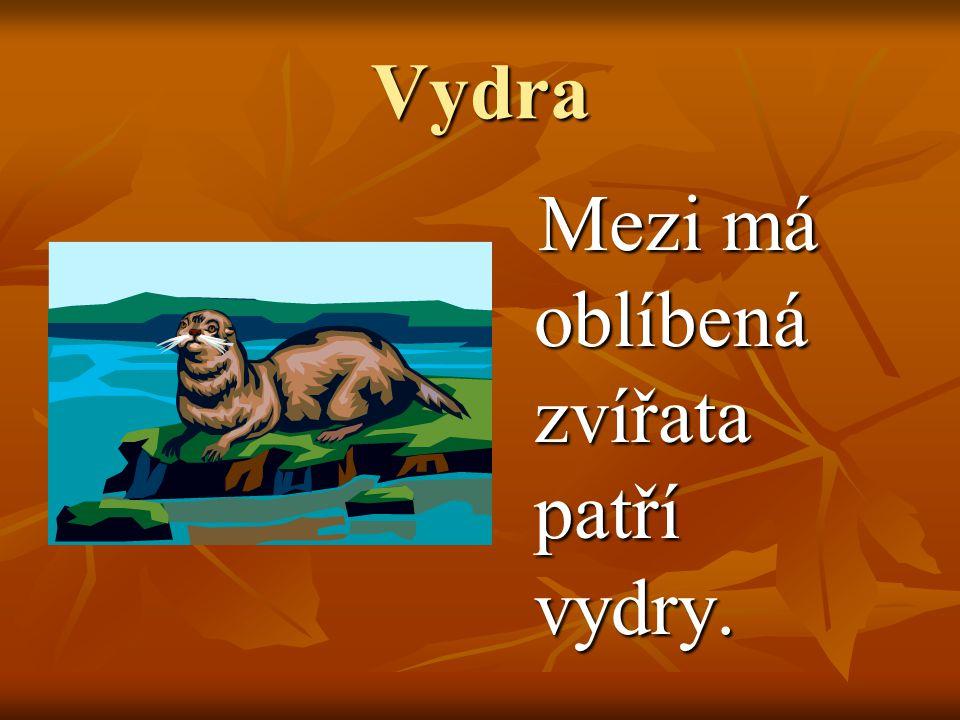 Vydra Mezi má oblíbená zvířata patří vydry. Mezi má oblíbená zvířata patří vydry.
