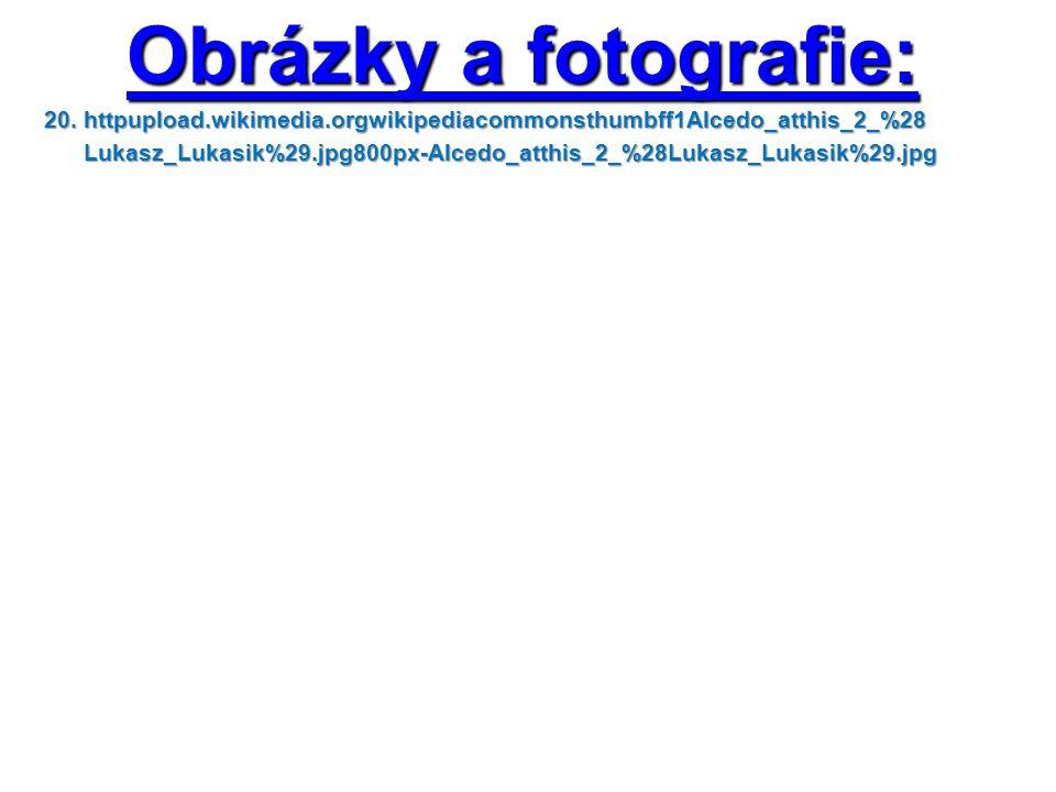 Obrázky a fotografie: 20. httpupload.wikimedia.orgwikipediacommonsthumbff1Alcedo_atthis_2_%28 Lukasz_Lukasik%29.jpg800px-Alcedo_atthis_2_%28Lukasz_Luk