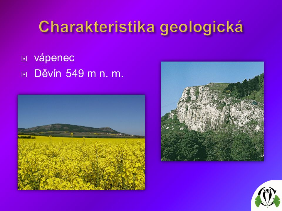  vápenec  Děvín 549 m n. m.