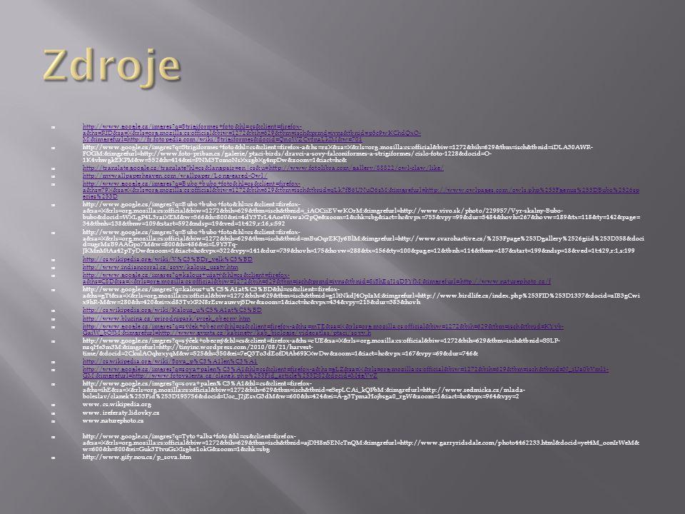  http://www.google.cz/imgres?q=Strigiformes+foto&hl=cs&client=firefox- a&hs=RID&sa=X&rls=org.mozilla:cs:official&biw=1272&bih=629&tbm=isch&prmd=ivns&
