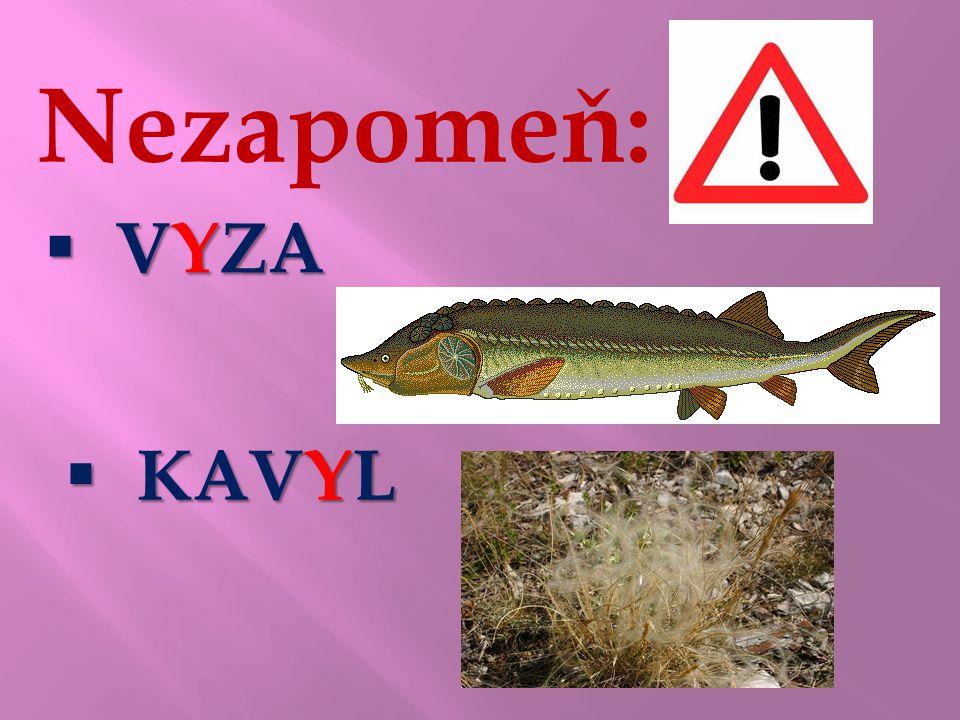 Nezapomeň:  VYZA  KAVYL