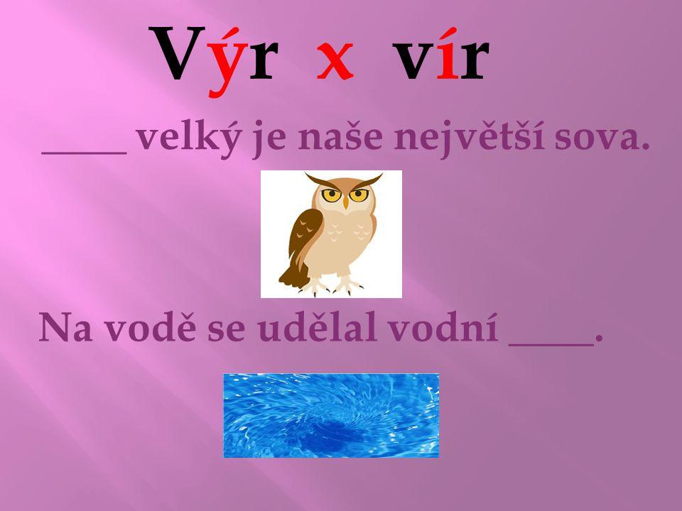 Výr x vír ____ velký je naše největší sova. Na vodě se udělal vodní ____. VýrVýr vírvír