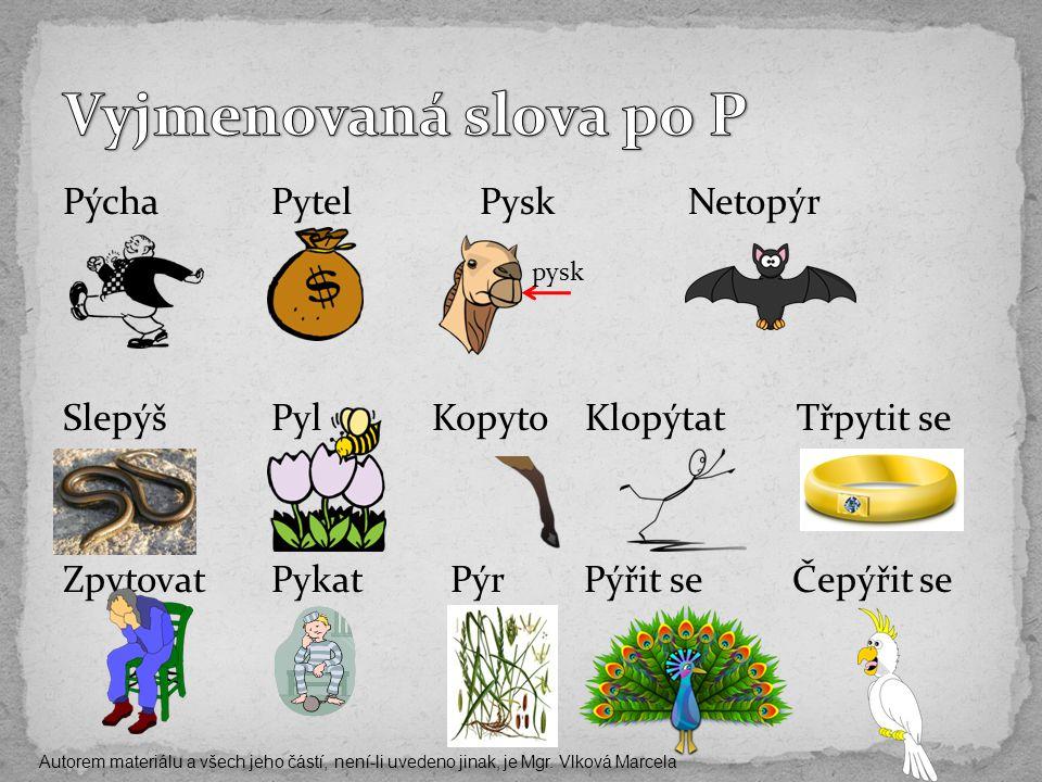 PýchaPytelPyskNetopýr SlepýšPyl Kopyto Klopýtat Třpytit se ZpytovatPykat PýrPýřit seČepýřit se pysk Autorem materiálu a všech jeho částí, není-li uvedeno jinak, je Mgr.
