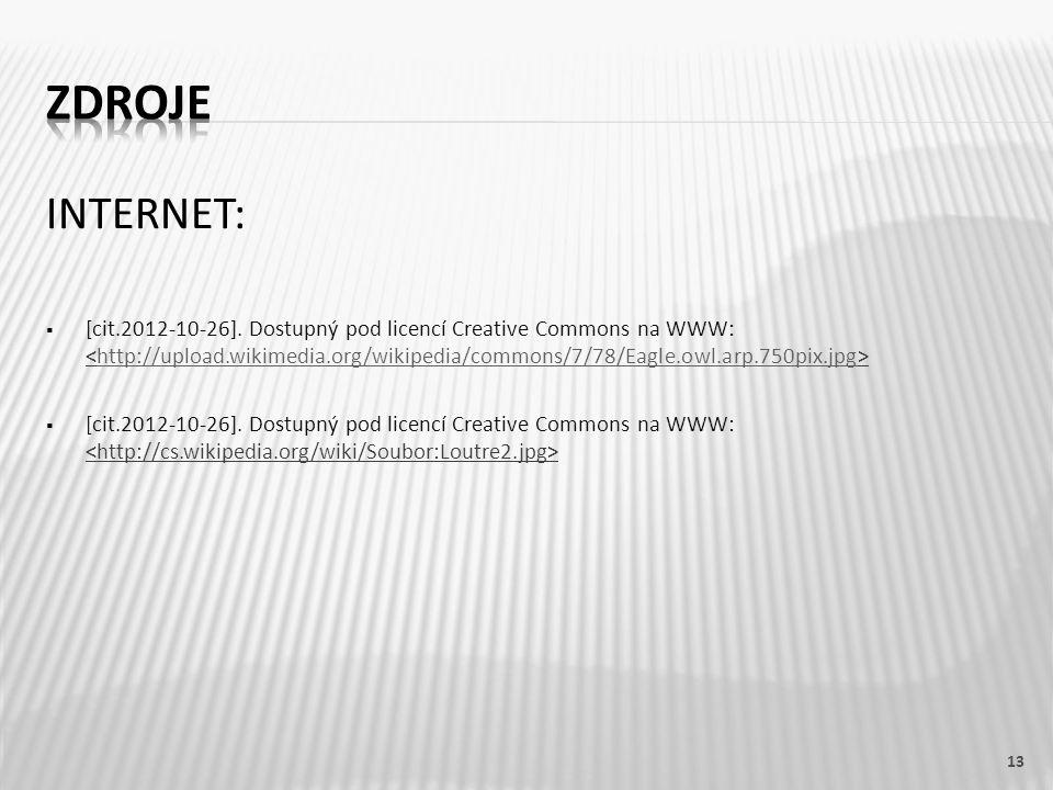 INTERNET:  [cit.2012-10-26]. Dostupný pod licencí Creative Commons na WWW: http://upload.wikimedia.org/wikipedia/commons/7/78/Eagle.owl.arp.750pix.jp