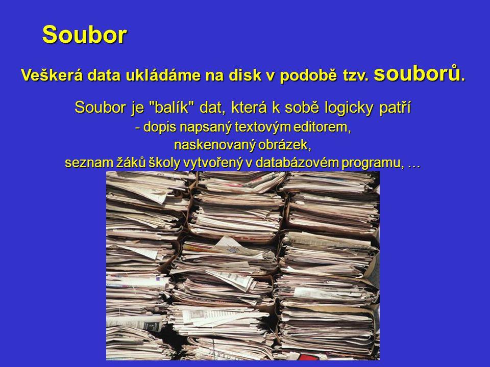 Soubor Veškerá data ukládáme na disk v podobě tzv. souborů. Soubor je