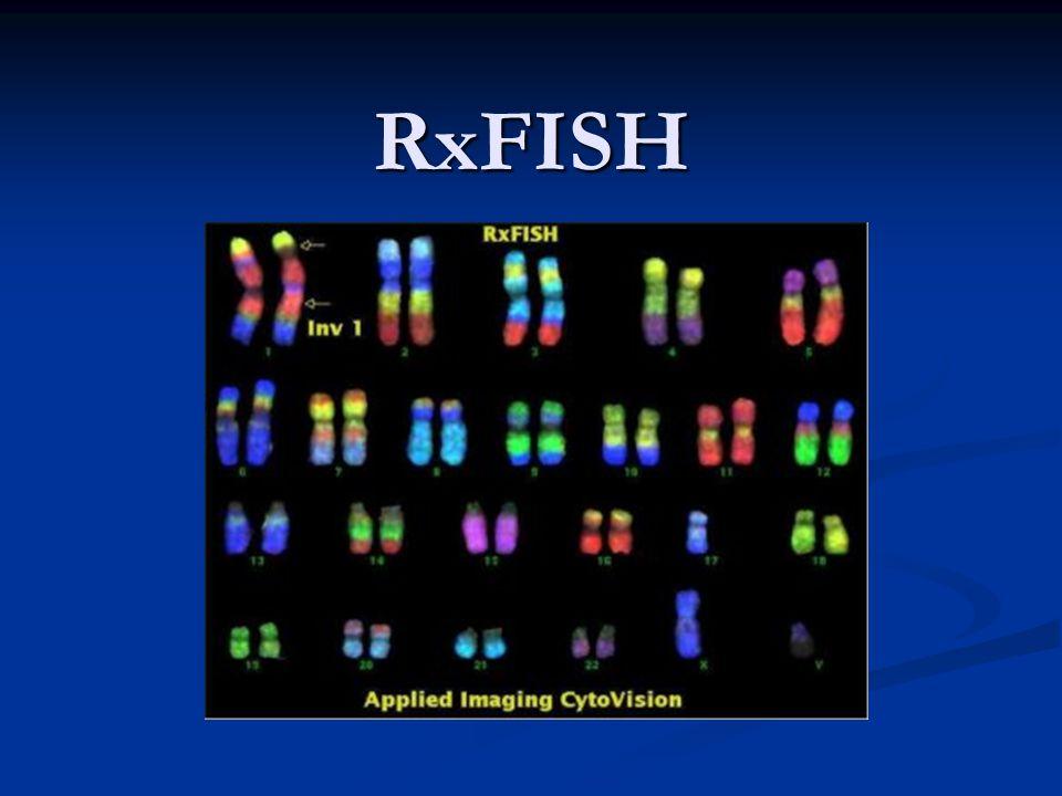 RxFISH =fluorescenční in situ hybridizace (rainbow = duha) - 1997, skupinou kolem profesora Malcolma Fergusona Smitha - jedna z nedávných pokroků ve FISH technologii - mnohobarevná pruhovací chromozomová analýza - sondy se vyrábějí z giboní chromozomální DNA; využívá se vysokého stupně homologie genomu