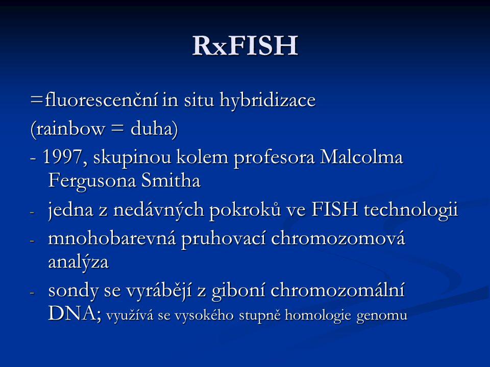 Mnohobarevné FISH techniky M FISH - 1996, Speicher - každý chromozom odlišen určitou barvou SKY FISH - 1996, Schröcková - každý chromozom odlišen určitou barvou - 24 chromozomově specifických celochromozomových sond, které byly vytvořeny na základě kombinačního značení za použití 5 různých fluorochromů