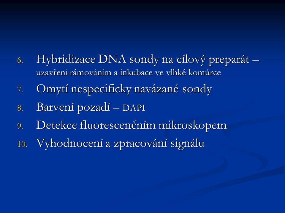6. Hybridizace DNA sondy na cílový preparát – uzavření rámováním a inkubace ve vlhké komůrce 7. Omytí nespecificky navázané sondy 8. Barvení pozadí –
