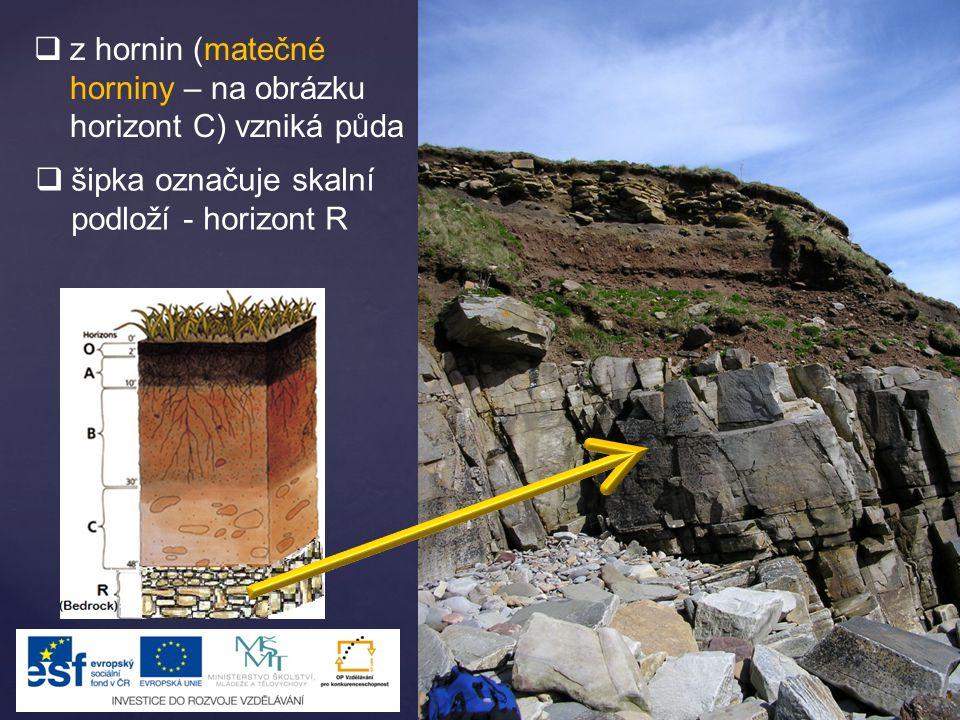  z hornin (matečné horniny – na obrázku horizont C) vzniká půda  šipka označuje skalní podloží - horizont R