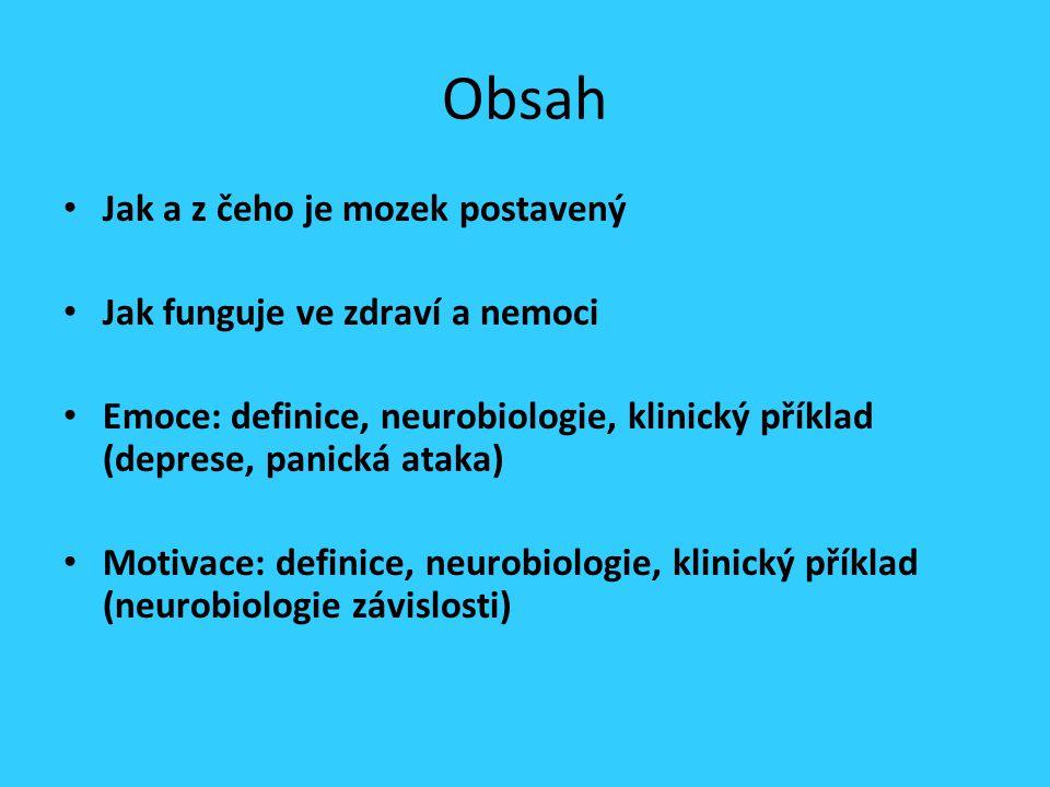 Obsah Jak a z čeho je mozek postavený Jak funguje ve zdraví a nemoci Emoce: definice, neurobiologie, klinický příklad (deprese, panická ataka) Motivac