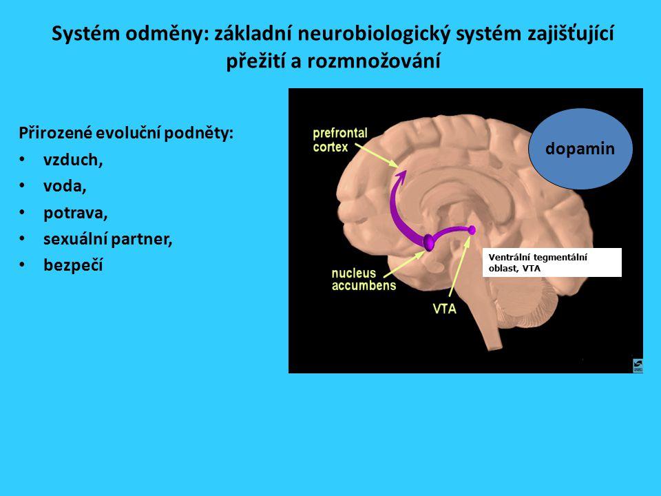 Systém odměny: základní neurobiologický systém zajišťující přežití a rozmnožování Přirozené evoluční podněty: vzduch, voda, potrava, sexuální partner, bezpečí Ventrální tegmentální oblast, VTA dopamin