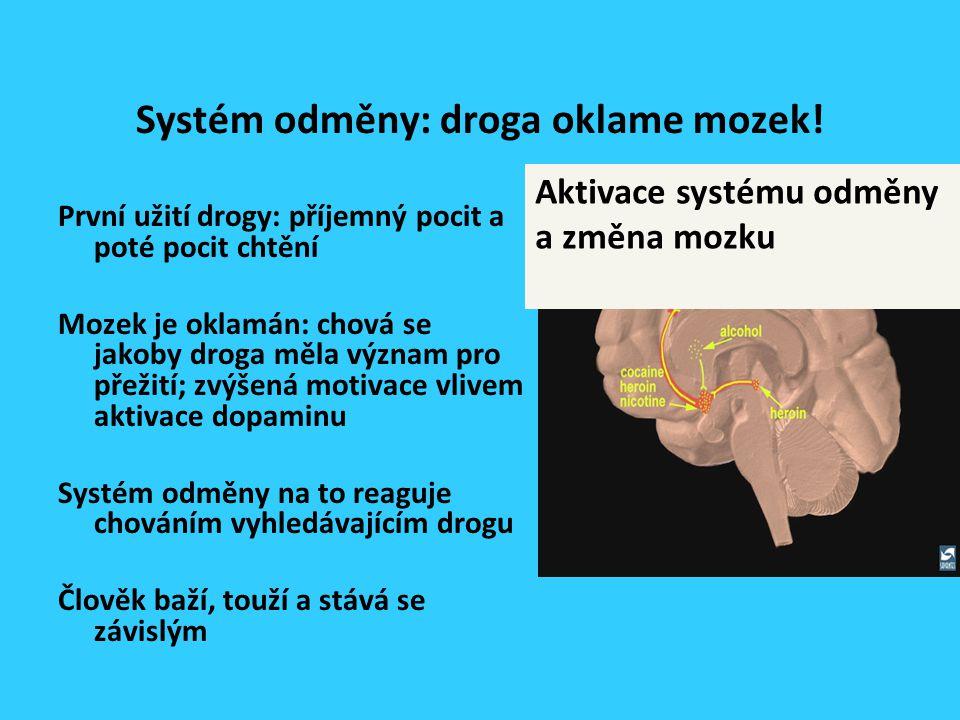 Systém odměny: droga oklame mozek.
