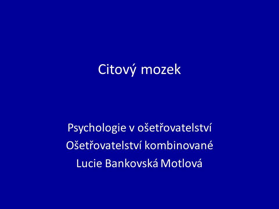 Citový mozek Psychologie v ošetřovatelství Ošetřovatelství kombinované Lucie Bankovská Motlová