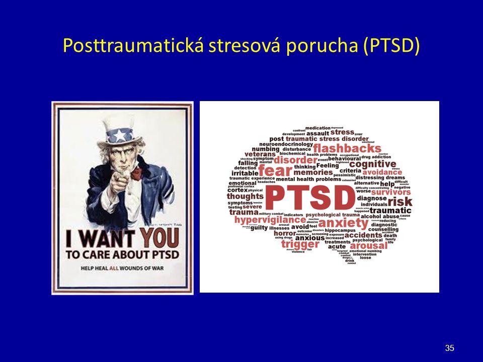 Posttraumatická stresová porucha (PTSD) 35