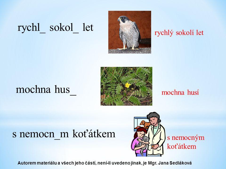 rychl_ sokol_ let rychlý sokolí let mochna hus _ mochna husí s nemocn_m koťátkem s nemocným koťátkem Autorem materiálu a všech jeho částí, není-li uvedeno jinak, je Mgr.