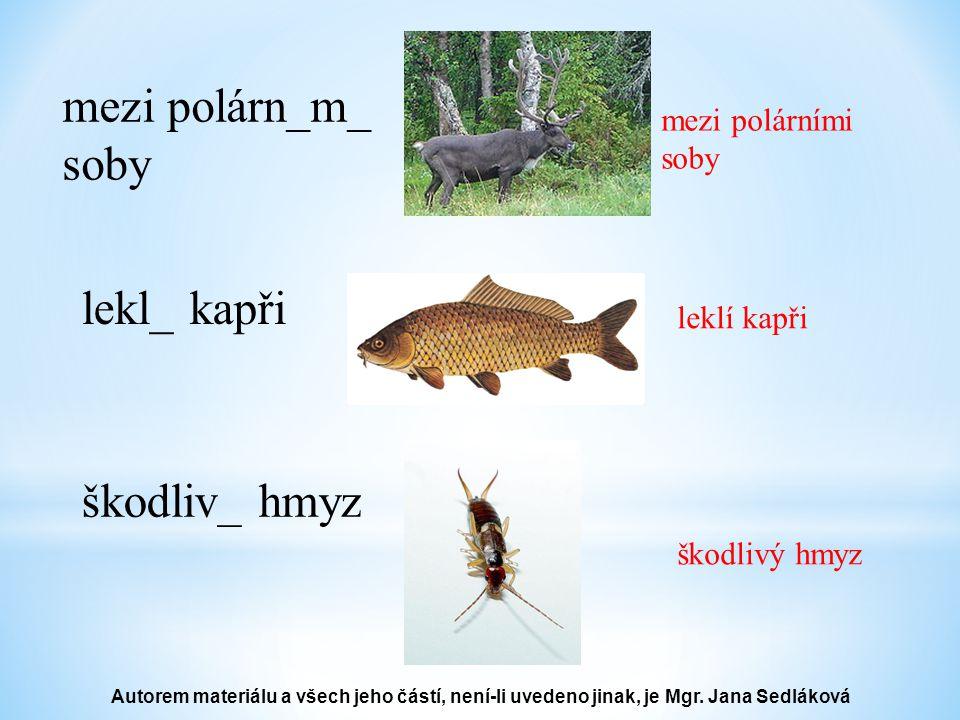 mezi polárn_m_ soby mezi polárními soby lekl_ kapři leklí kapři škodliv_ hmyz škodlivý hmyz Autorem materiálu a všech jeho částí, není-li uvedeno jinak, je Mgr.