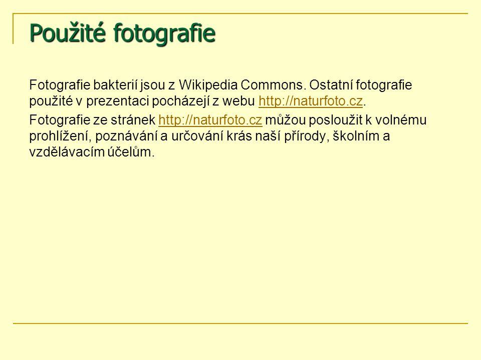 Použité fotografie Fotografie bakterií jsou z Wikipedia Commons. Ostatní fotografie použité v prezentaci pocházejí z webu http://naturfoto.cz.http://n