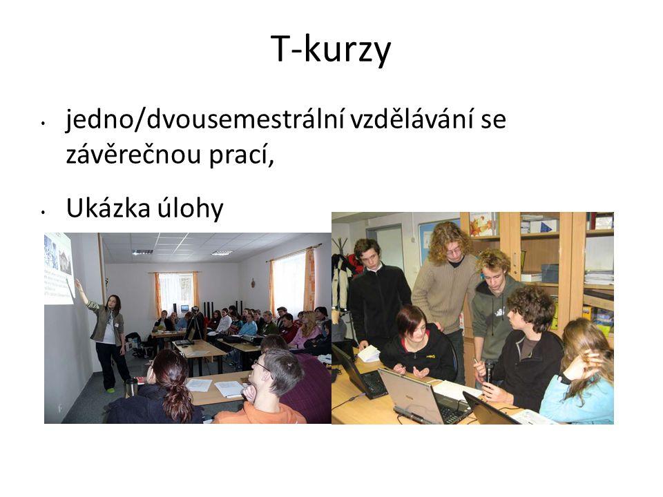 T-kurzy jedno/dvousemestrální vzdělávání se závěrečnou prací, Ukázka úlohy