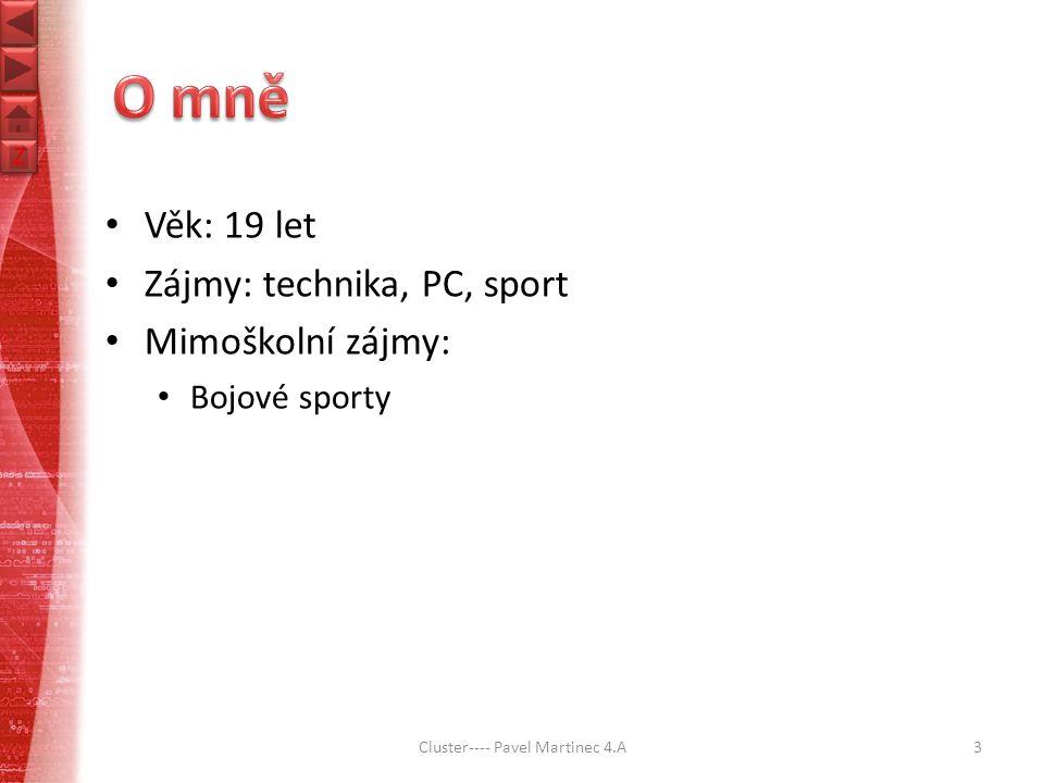 Z Z Věk: 19 let Zájmy: technika, PC, sport Mimoškolní zájmy: Bojové sporty Cluster---- Pavel Martinec 4.A3