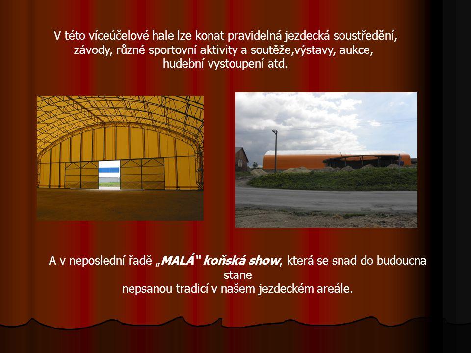 Nová hala V prostorech jezdeckého oddílu TJ JO HORYMAS Horní Město vzniká nová krytá hala o rozměrech 60x26m.