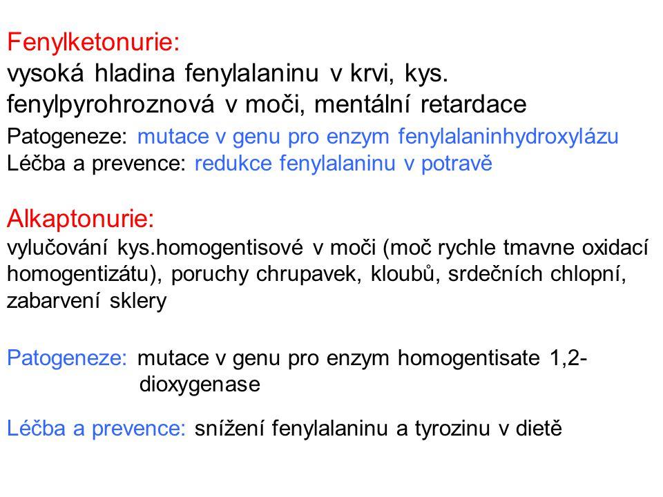 Fenylketonurie: vysoká hladina fenylalaninu v krvi, kys. fenylpyrohroznová v moči, mentální retardace Patogeneze: mutace v genu pro enzym fenylalaninh