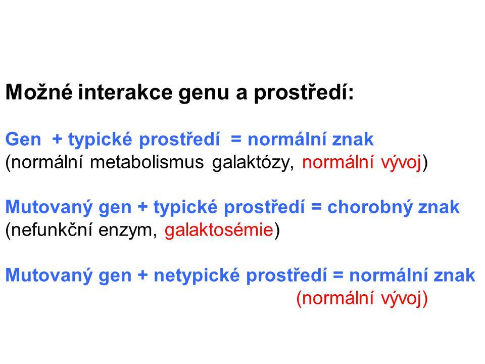 THYROXIN   4 (dyshormonogeneze)  1  2 (albinismus) Dieta  fenylalanin  tyrozin  DOPA  melanin   kys.fenylpyro- kys.homogentisová hroznová (alkaptonurie) (fenylketonurie)    3 kys.