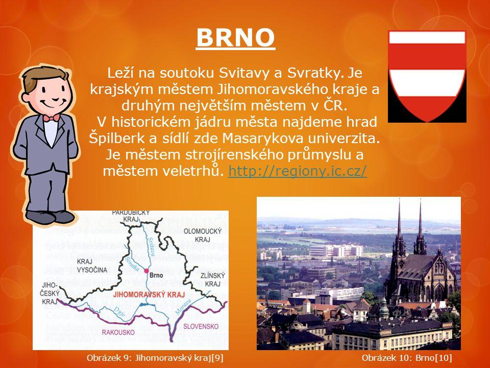 BRNO Leží na soutoku Svitavy a Svratky. Je krajským městem Jihomoravského kraje a druhým největším městem v ČR. V historickém jádru města najdeme hrad