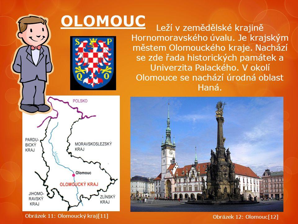 Leží v zemědělské krajině Hornomoravského úvalu. Je krajským městem Olomouckého kraje. Nachází se zde řada historických památek a Univerzita Palackého