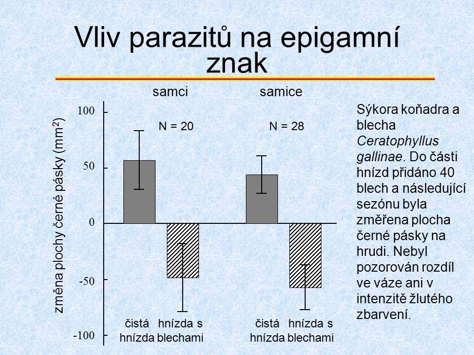 Vliv parazitů na epigamní znak 0 50 100 -50 -100 N = 20 samci změna plochy černé pásky (mm 2 ) N = 28N = 28 samice čistá hnízda hnízda s blechami čist