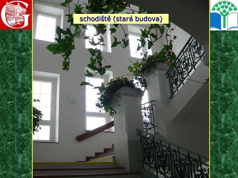 schodiště (stará budova)
