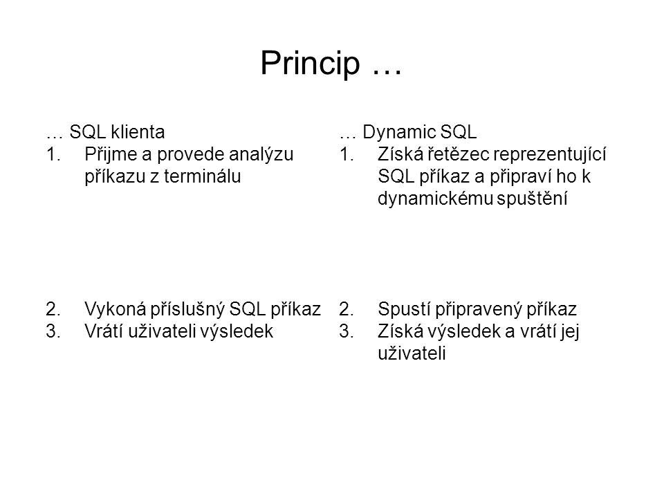 Princip … … Dynamic SQL 1.Získá řetězec reprezentující SQL příkaz a připraví ho k dynamickému spuštění 2.Spustí připravený příkaz 3.Získá výsledek a vrátí jej uživateli … SQL klienta 1.Přijme a provede analýzu příkazu z terminálu 2.Vykoná příslušný SQL příkaz 3.Vrátí uživateli výsledek