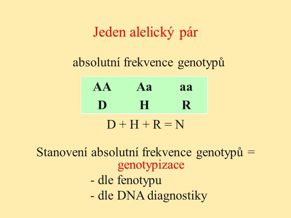 Jeden alelický pár absolutní frekvence genotypů AAAaaa DHR AAAaaa DHR D + H + R = N Stanovení absolutní frekvence genotypů = genotypizace - dle fenoty