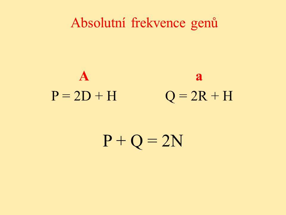 Absolutní frekvence genů P + Q = 2N Aa P = 2D + HQ = 2R + H